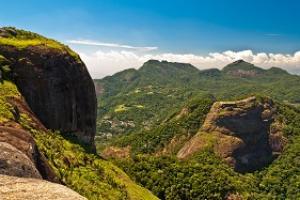 Tijuca_forest_Brazil