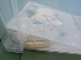 変色したABS樹脂パーツは、ワイドハイターEX漬け置き、屋外紫外線照射で漂白し再生。