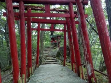 鬼怒川温泉2日目 おさるの山で観光