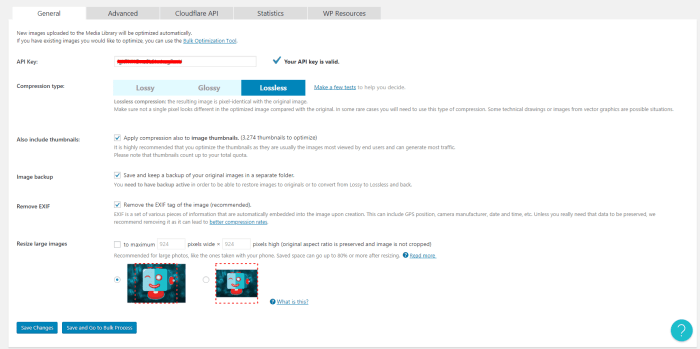 Wordpress ShortPixel WebP Ayarları