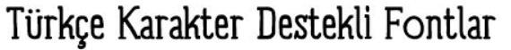 Türkçe Karakter Destekli Fontlar: Panforte Serif Font Family