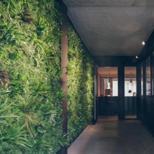 Mur végétal à l'entrée de la Maison de la Danse