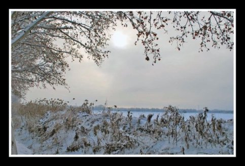 jardin de invierno
