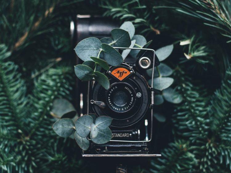 Inventos victorianos: La cámara de fotos