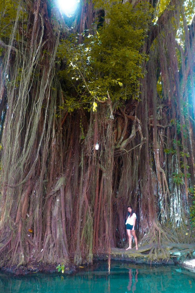 "ALT=""the old balete tree siquijor travel guide"""