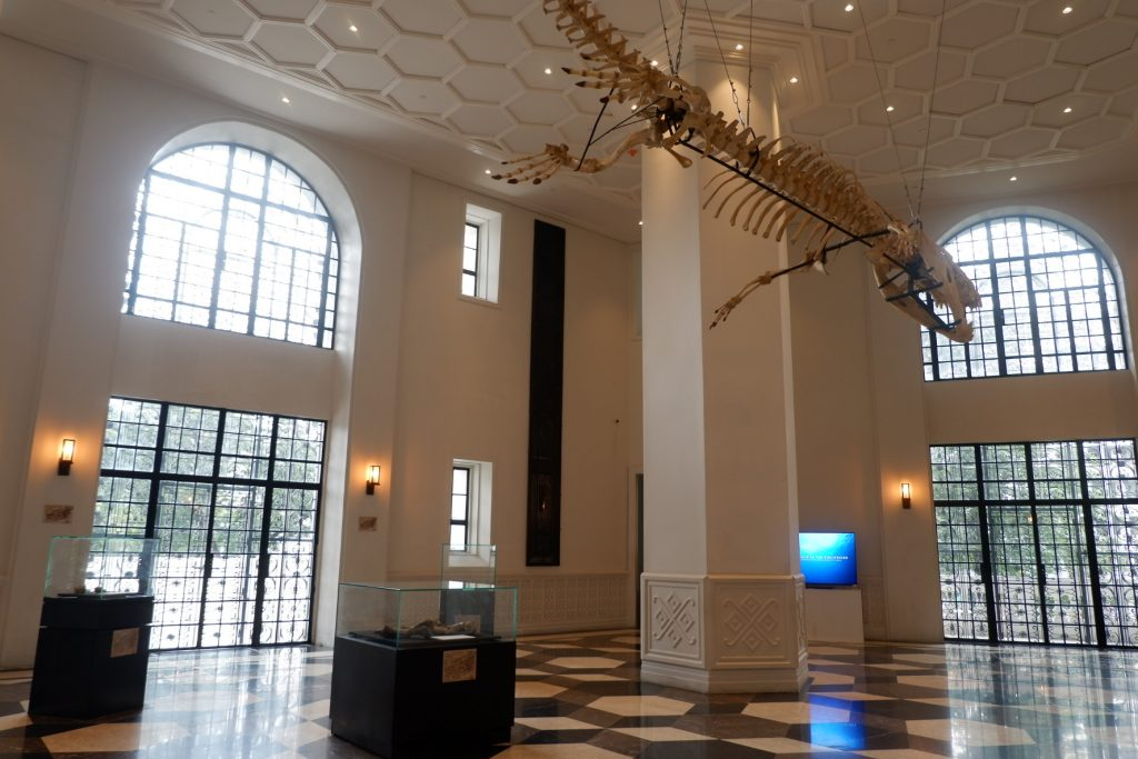 """ALT=""""national museum of natural history and lolong exhibition"""""""