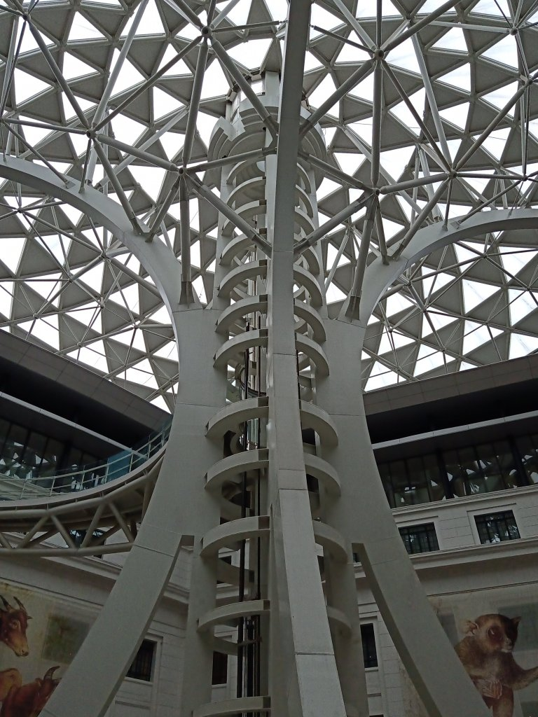 """ALT=""""national museum of natural history and tree of life"""""""