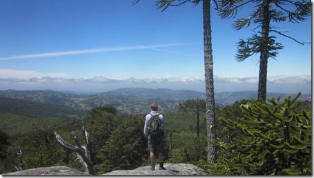1. Parque Nacional Nahuelbuta---