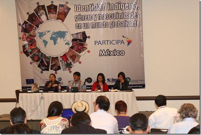 Delegacion de La Araucanía asiste al Cuarto Taller Temático del Programa Participa (5)