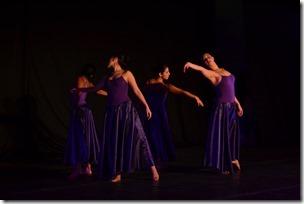 Día danza Temuco 3