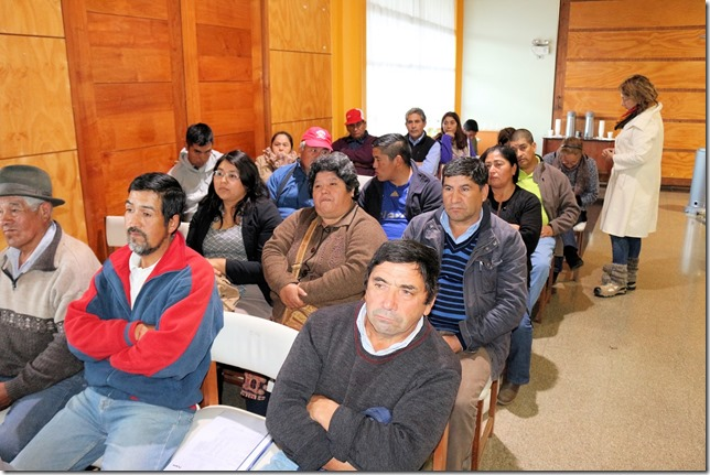 Participacion Ciudadana Lautaro (2)