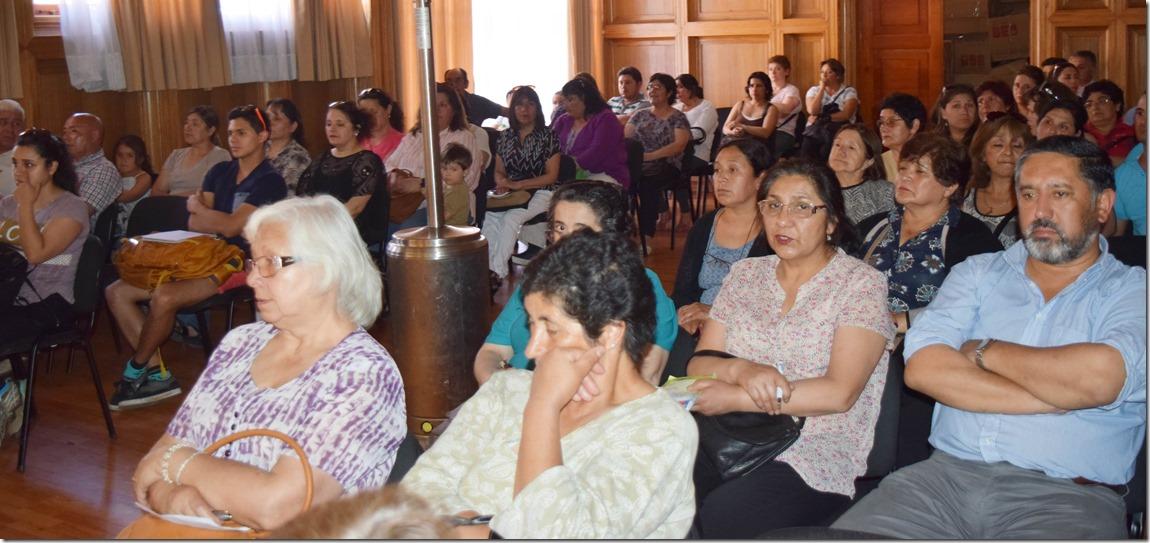 85 Familias de Villarrica se beneficiarán con proyecto de colectores solares  (1)
