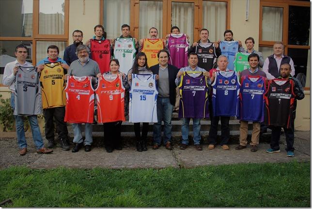 Equipos Liga Saesa 2017 2.jpg