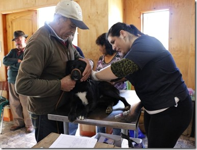 FOTO operativo veterinario septiembre