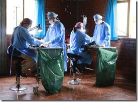 FOTO primer operativo esterilización 1