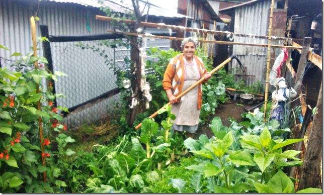 Interesante Programa se ejecutará en Villarrica (1)
