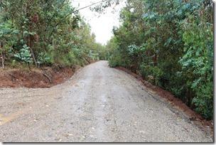Vialidad ejecuta trabajos de conservación de caminos en las comunas de Lumaco, Los Sauces y Purén  (1)