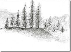 Exposición paisajes en tiralinea