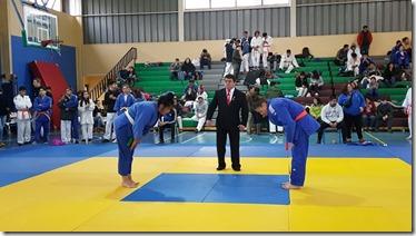 judo zonal sur lchtemuco (2)