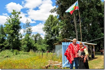 Camping mapuche