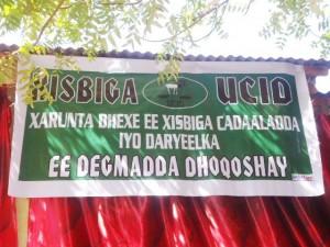 Ucid dhoqoshay