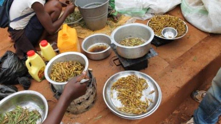 Kongo Cayayaanka la saloolay