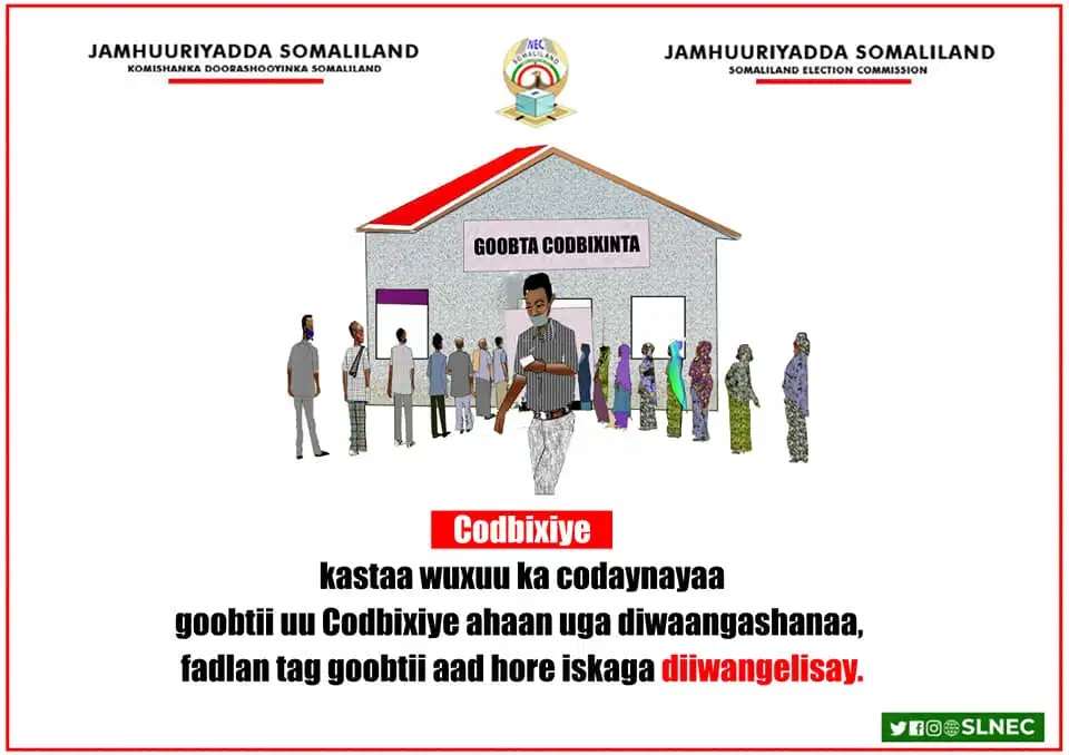 Alt:Araweelo News Network