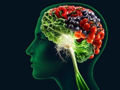 تغذية الدماغ