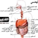 أمراض الجهاز الهضمي – الجزء الأول