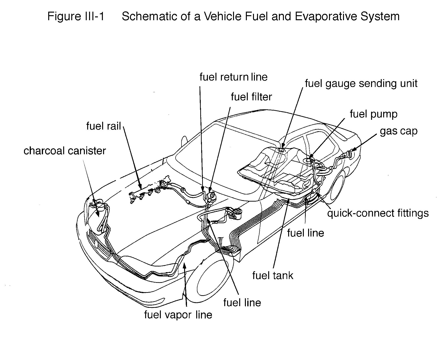 Schematic Of A Vehicle Fuel And Evaporative System