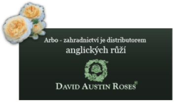 banner-anglicke-ruze