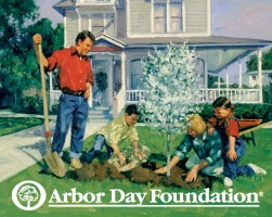 https://i1.wp.com/www.arborday.org/media/graphics/highres_new/familyPlantDeciduous.jpg?resize=251%2C200