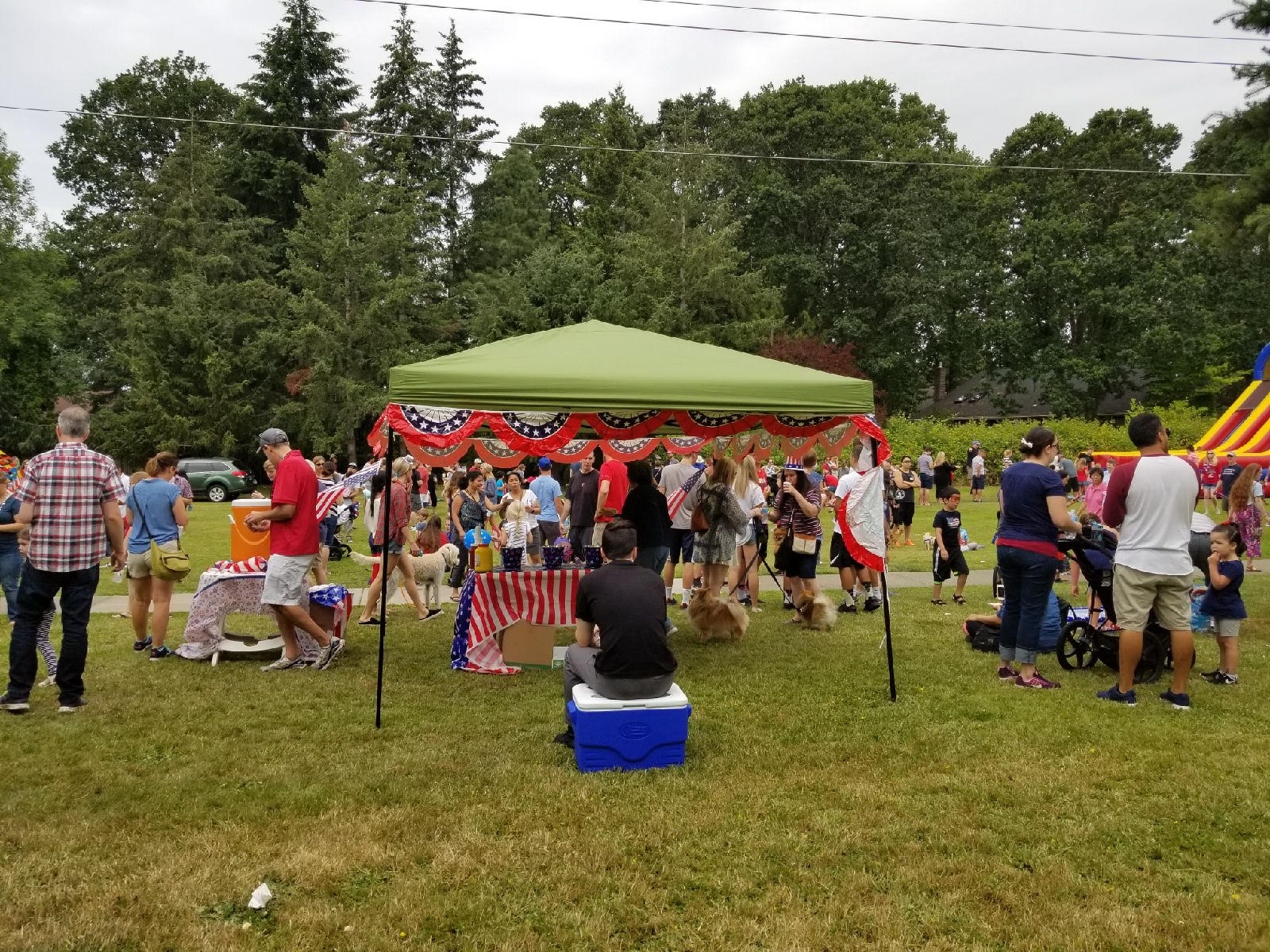 July 4th 2018 picture 8