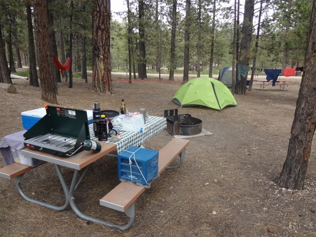 Our new campsite