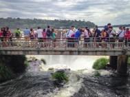 waterfall, walkway, Iguazu Falls, arboursabroad