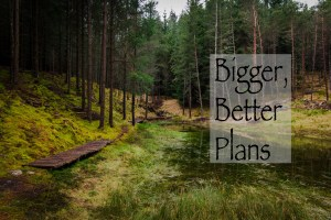 Bigger, Better Plans | When Things Don't Go as You Think They Will