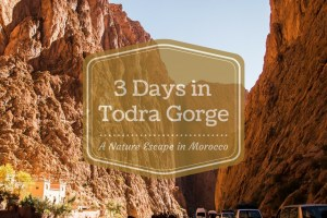 If You're in Morocco You Have to Visit The Todra Gorge   Escaping Tourism in Morocco