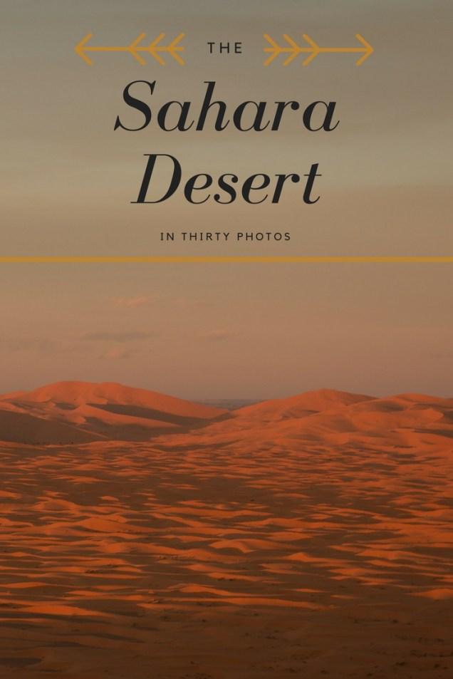 Sahara Desert, sand dunes, Morocco, arboursabroad