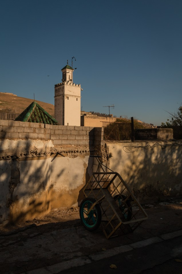 Donkey cart and mosque, Fez, Morocco work, Arboursabroad