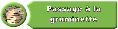 puce_gruminette