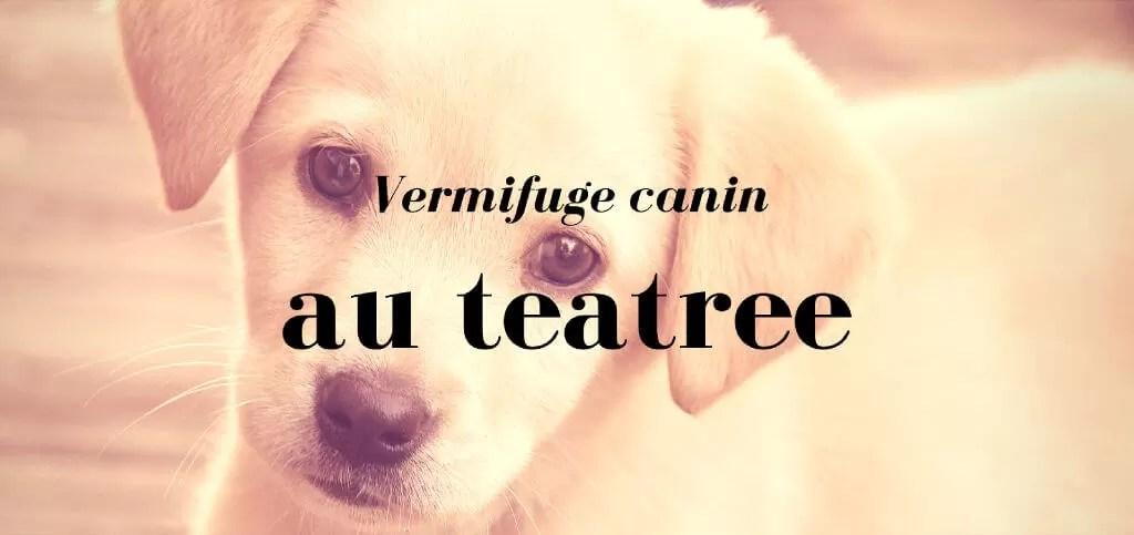 vermifuge teatree pour chiens