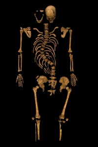 Richard's remains. The sideways curve of his spine - evidence of severe scoliosis - can be claerly seen. Credit - University of Leicester