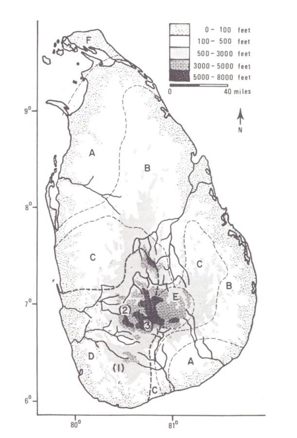 sri-lanka-s-u-deraniyagala-archaeology-lk