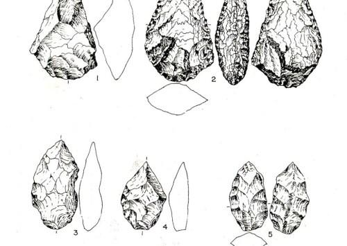 Prehistory of Sri Lanka 6: Paleolithic period