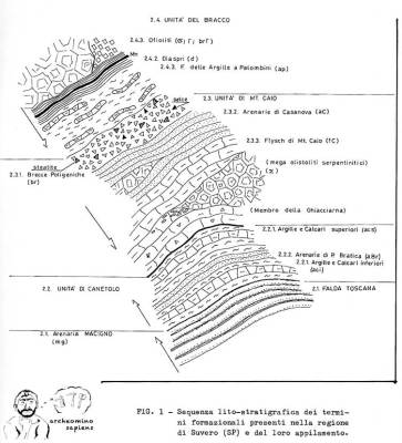immagine nel testo
