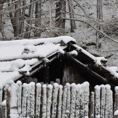 Da ist er noch mal, der Winter.<br/>È tornato l'inverno…<br/>Winter is back…