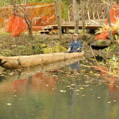 Jungfernfahrt mit dem Einbaum im archheoParc-TeichLa prima prova su acqua della monossile nel laghetto dell'archeoParcThe maiden trip of he dug out at the archeoParc fish pondOctober 2016