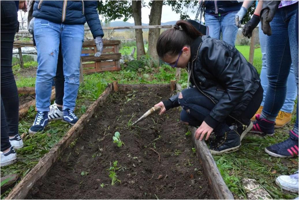 Pontecagnano, parco InVita, Ecobox