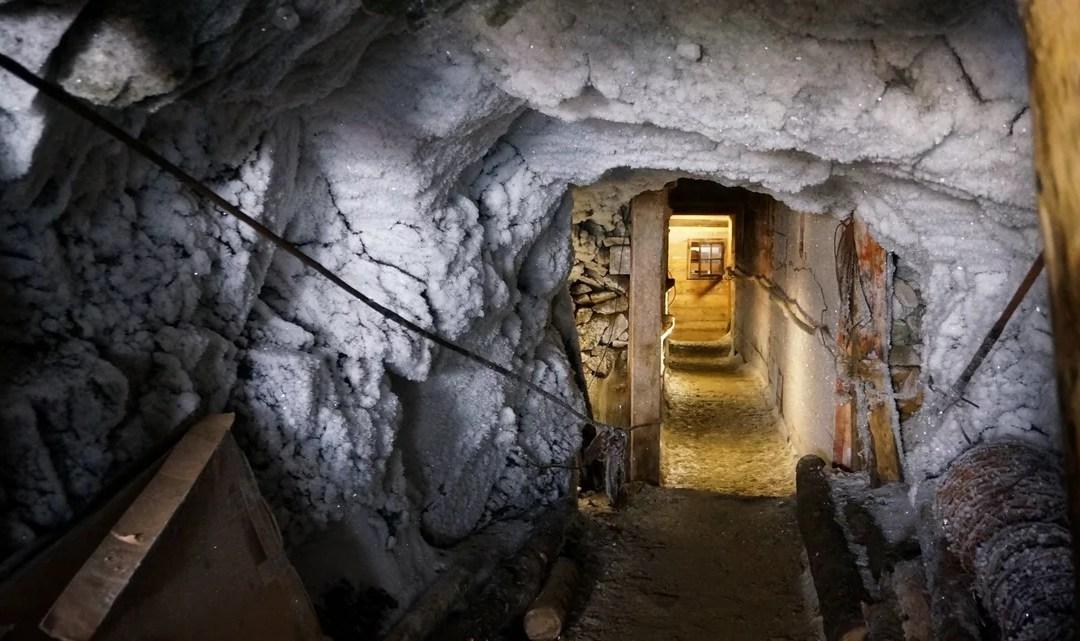 L'archeologia della Grande Guerra: ricostruzione di storie senza Storia