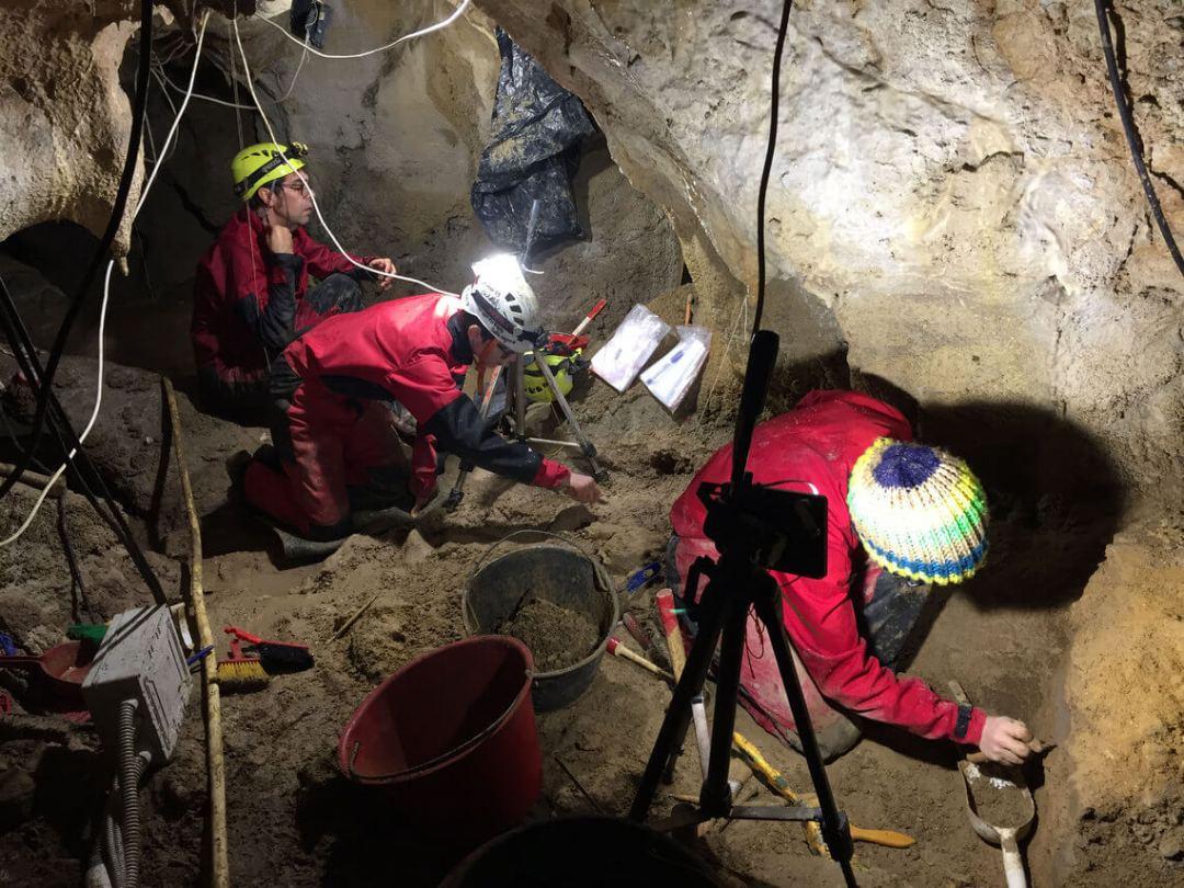 grotta guattari ricerche